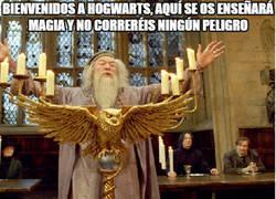 Enlace a No hay ningún peligro en Hogwarts, excepto...