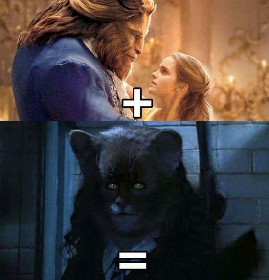 Meme_otros - Esto es lo que sale si mezclas a Bella y la Bestia