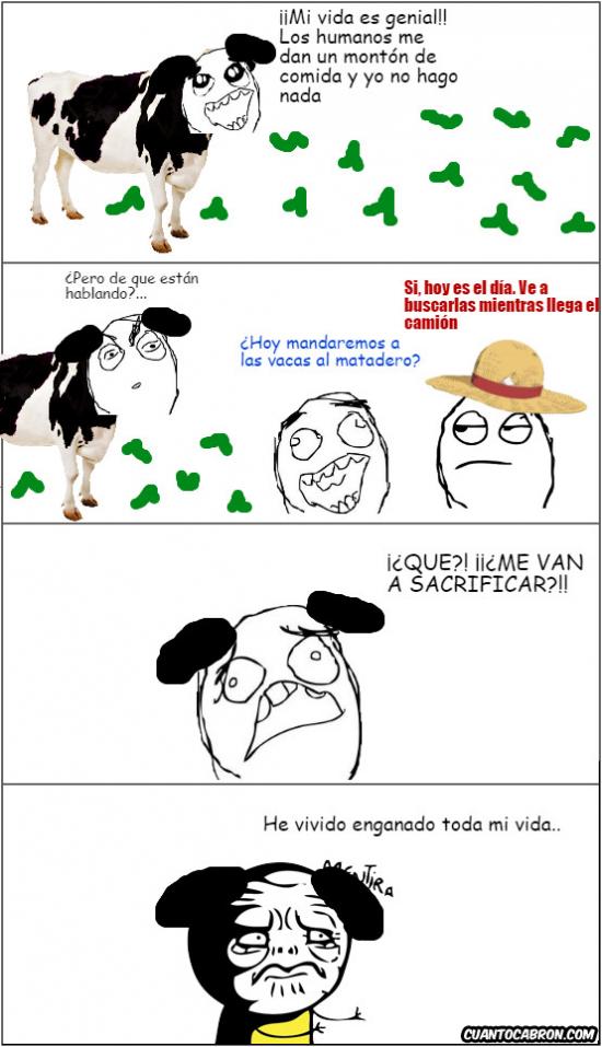 Mentira - La triste vida de una vaca...