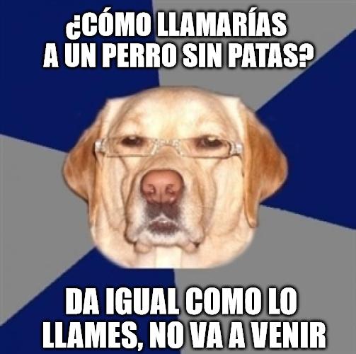 Meme_otros - Perro racista ataca de nuevo