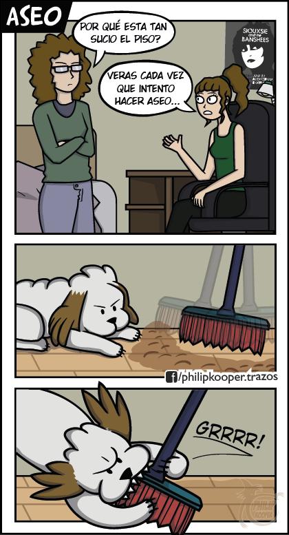 True_story - El aseo es complicado con animales