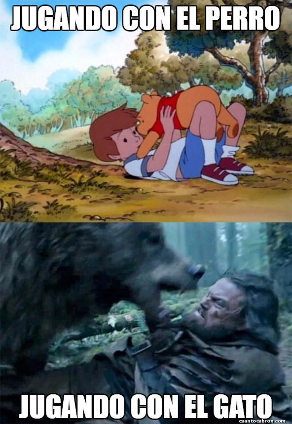 Bear_leo - Diferencias de especie...
