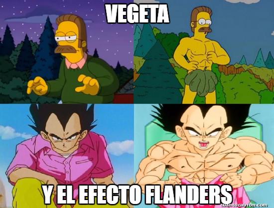 Meme_otros - El efecto Flanders