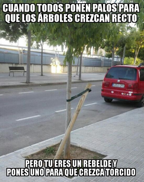 Meme_otros - Rebeldía en las calles