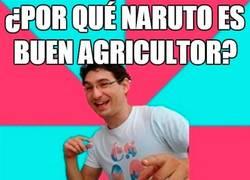 Enlace a Naruto el agricultor