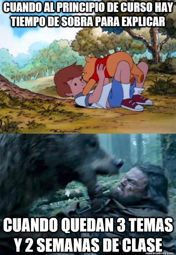 Bear_leo - Todo son prisas