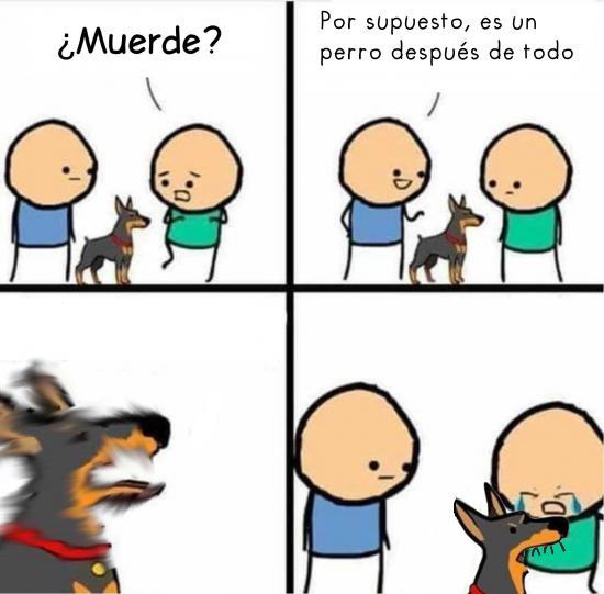 Allthethings - ¿En qué mundo un perro no muerde?