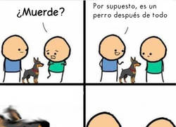Enlace a ¿En qué mundo un perro no muerde?