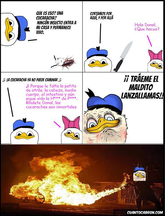Dolan - No hagas enojar a Donald