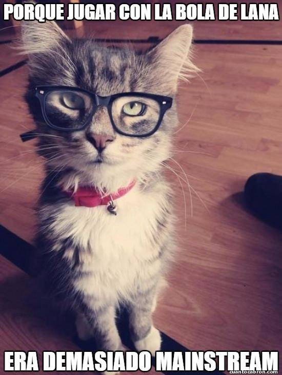 Meme_otros - El gato hipster
