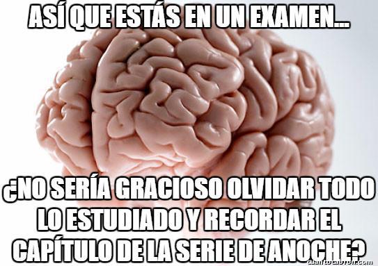 Cerebro_troll - Tragedia académica