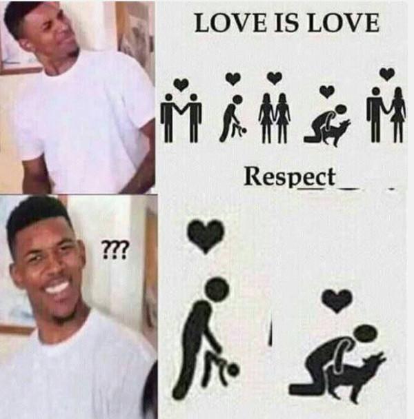el amor es amor,what