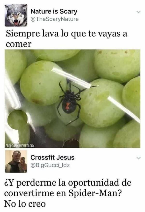 araña,comida,conversión,lavar,spiderman