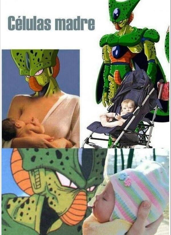 Meme_otros - Las madres de todas las células