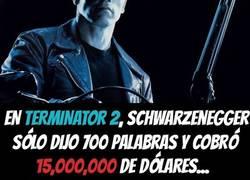 Enlace a La diferencia entre Schwarzenegger y Mark Hamill