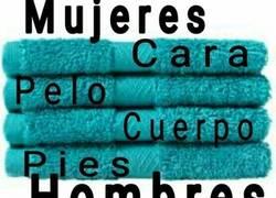 Enlace a Las toallas y su uso