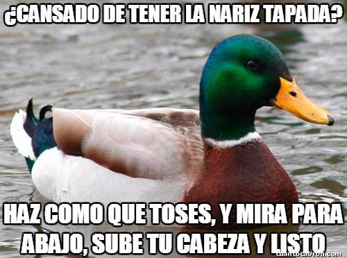 Pato_consejero - Solucion a una parte molesta del resfriado