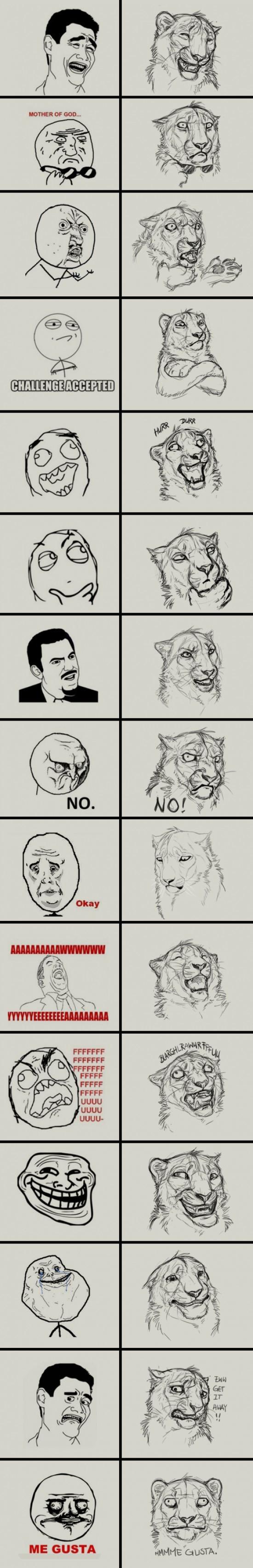 Otros - ¡Memes dibujados como leones!