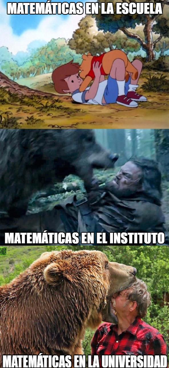 Bear_leo - Todo estudiante de ingeniería sabe que es así