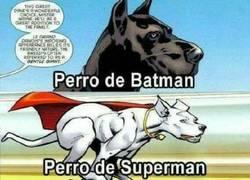 Enlace a Las mascotas de algunos superhéroes