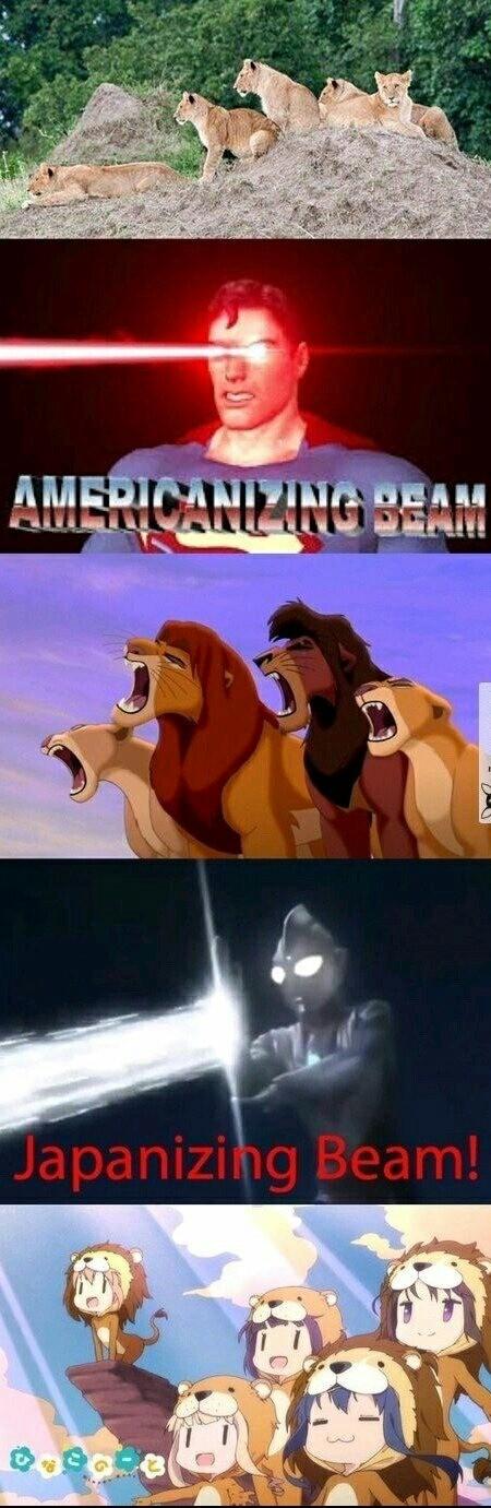 Meme_otros - Diferentes tipos de leones