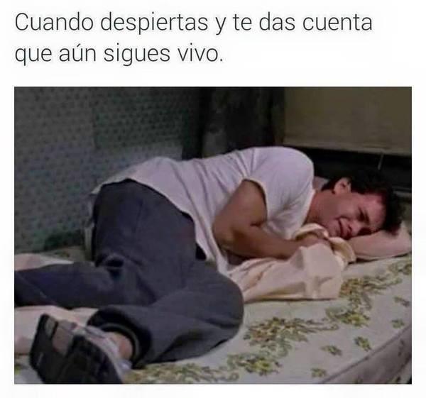 Meme_otros - Todos los días la misma tragedia...