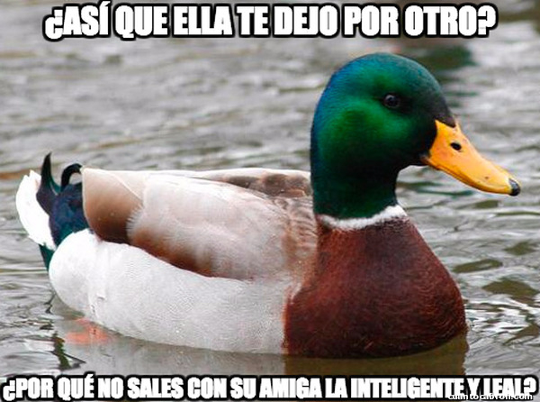 Pato_consejero - Es una buena idea