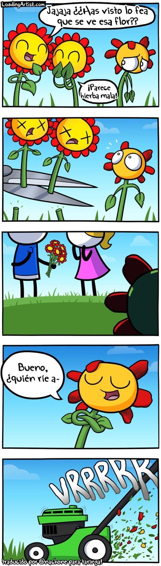 Otros - El triste destino de las flores