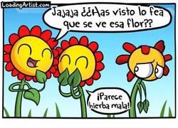 Enlace a El triste destino de las flores