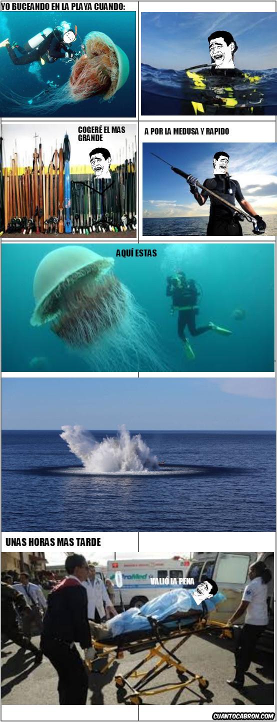 Yao - La medusa más grande ya está muerta gracias a Yao Ming