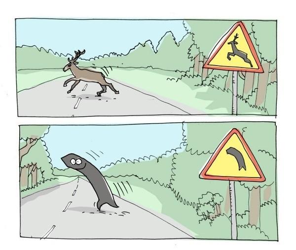 Otros - ¡Cuidado, curva salvaje!