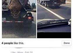 Enlace a La indignación de esta persona al ver como transportan un T-Rex en un camión
