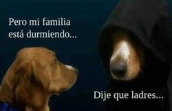 Enlace a Típico de perros