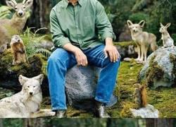 Enlace a Arnold se convierte en carne de montajes al posar en este bosque con animales