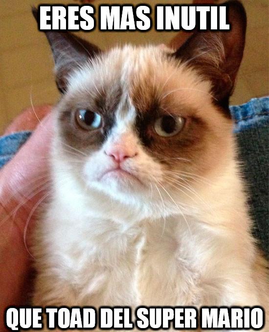 Grumpy_cat - Es una inutilidad de personaje