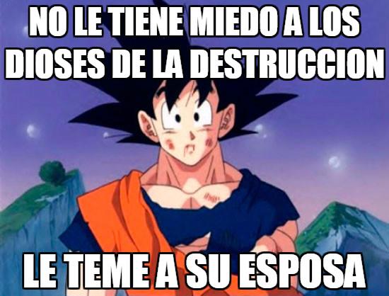 Son_goku - Goku y sus miedos