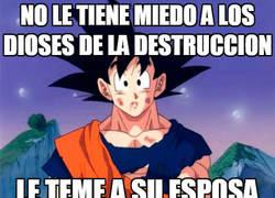 Enlace a Goku y sus miedos