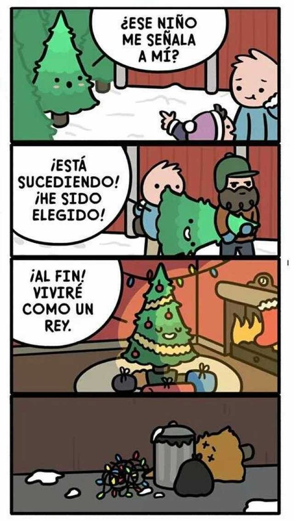 Otros - La vida de reyes de los árboles de Navidad