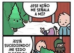 Enlace a La vida de reyes de los árboles de Navidad