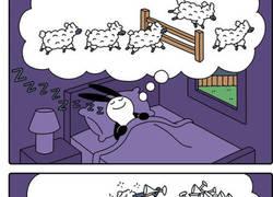 Enlace a Ovejitas mientras duermes