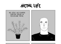Enlace a La vida del metal