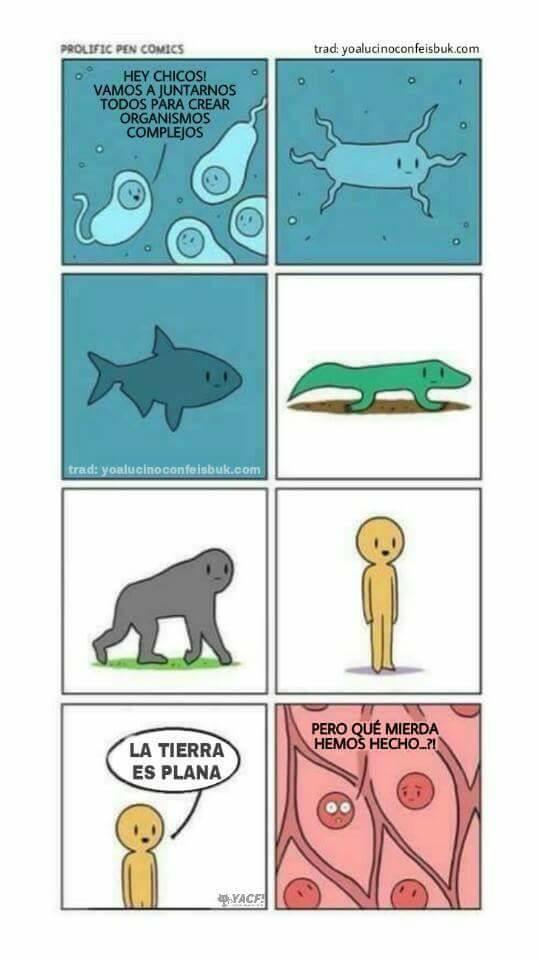 Otros - Los organismos cometieron un gran error