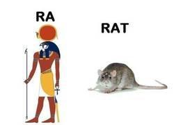 Enlace a Ratatatatata