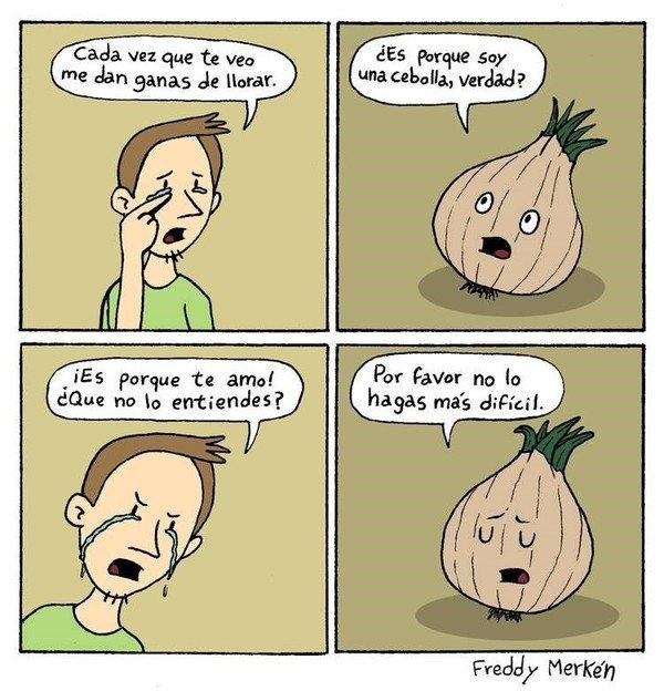 Otros - La relación con una cebolla