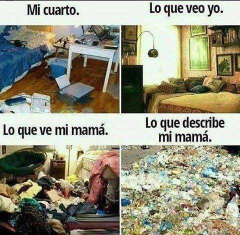 Meme_otros - Las diferentes perspectivas de una madre