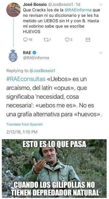 Meme_otros - Intenta dejar mal a la RAE y se lleva un buen revés