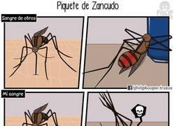 Enlace a Piquete de mosquito