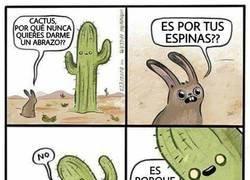 Enlace a El abrazo del cactus