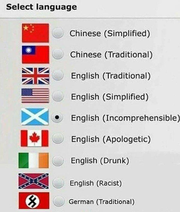 Meme_otros - Selecciona el idioma (honesto)