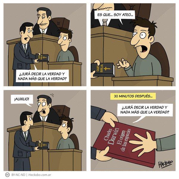 Allthethings - Testigo ateo